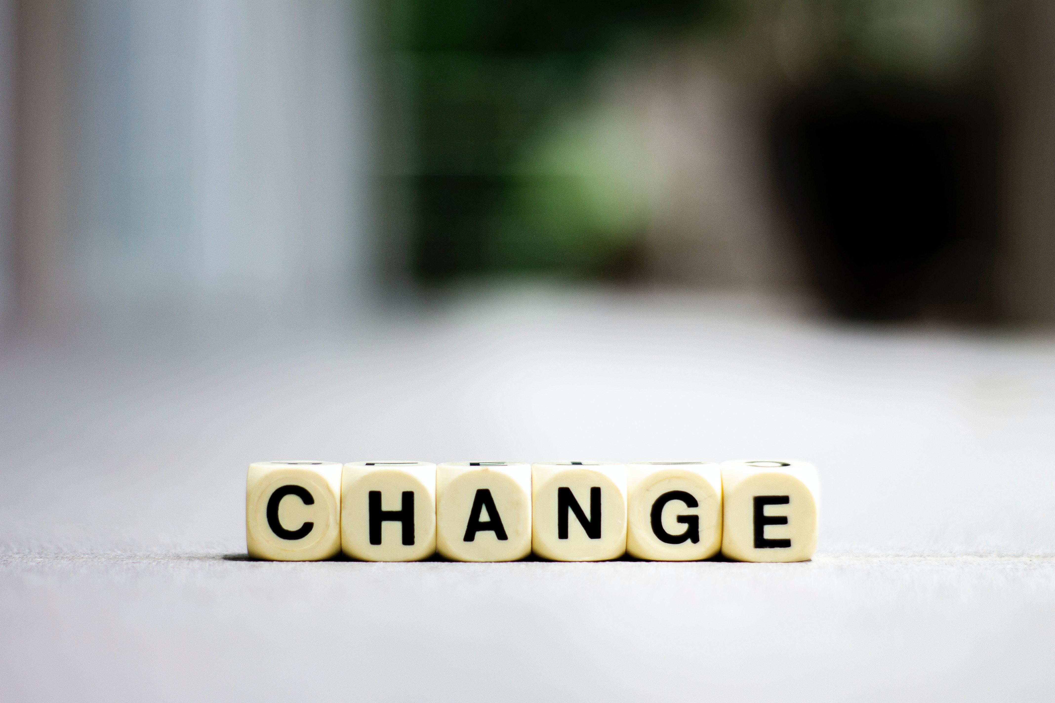 shallow-focus-photo-of-change-4502492